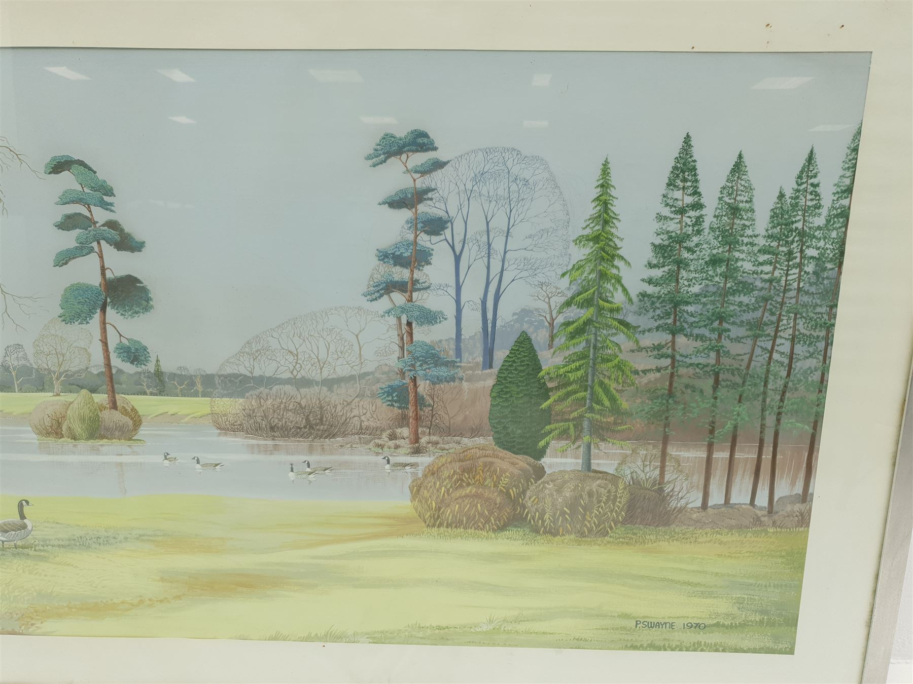 P Swayne (British 20th century): Geese in a River Landscape - Image 4 of 5