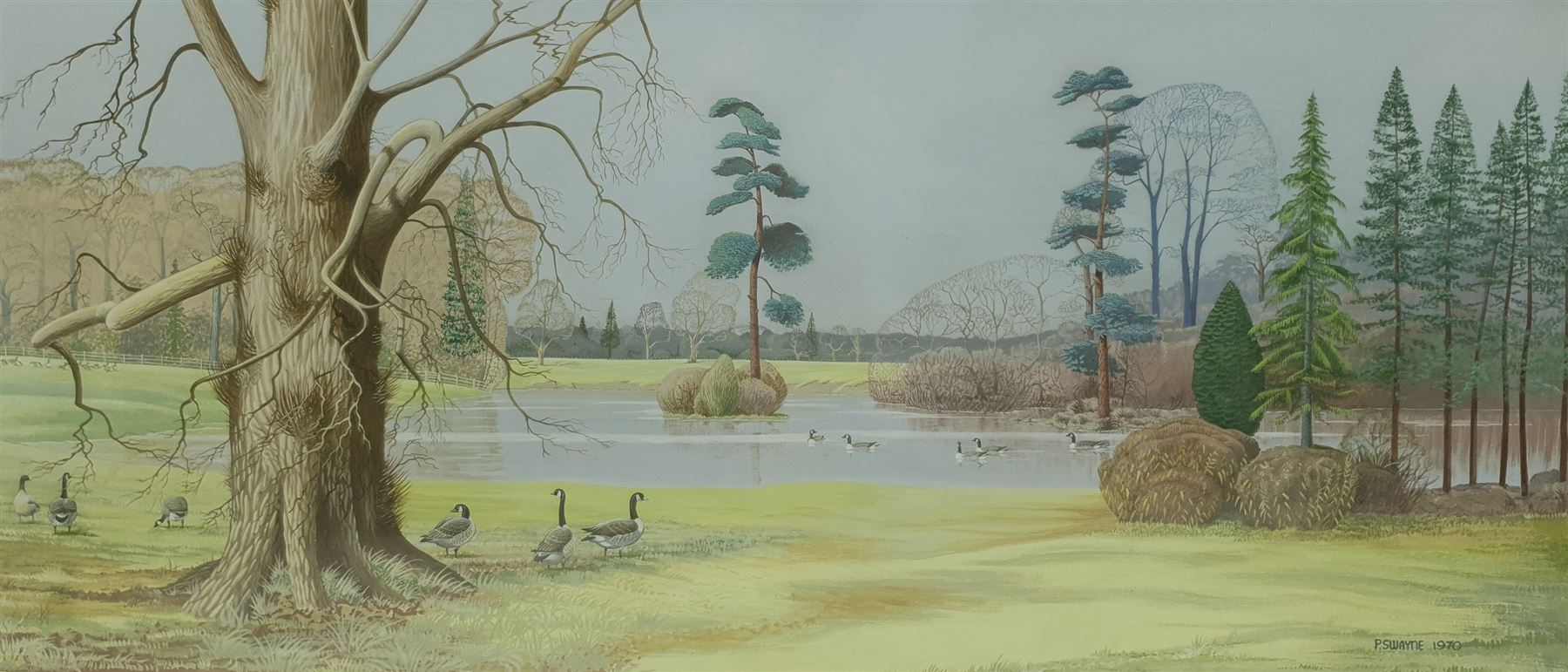 P Swayne (British 20th century): Geese in a River Landscape