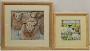 Penny Wicks (British 1949-): Sheep