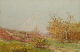 James Matthews (British 19th/20th century): 'Cowshot Common Surrey'