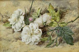 Helen Cordelia Coleman (Angell) (British 1847-1884): 'Roses'