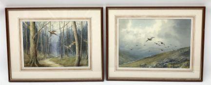 Cecil Thomas Hodgkinson (British 1895-1979): Pheasants in Flight