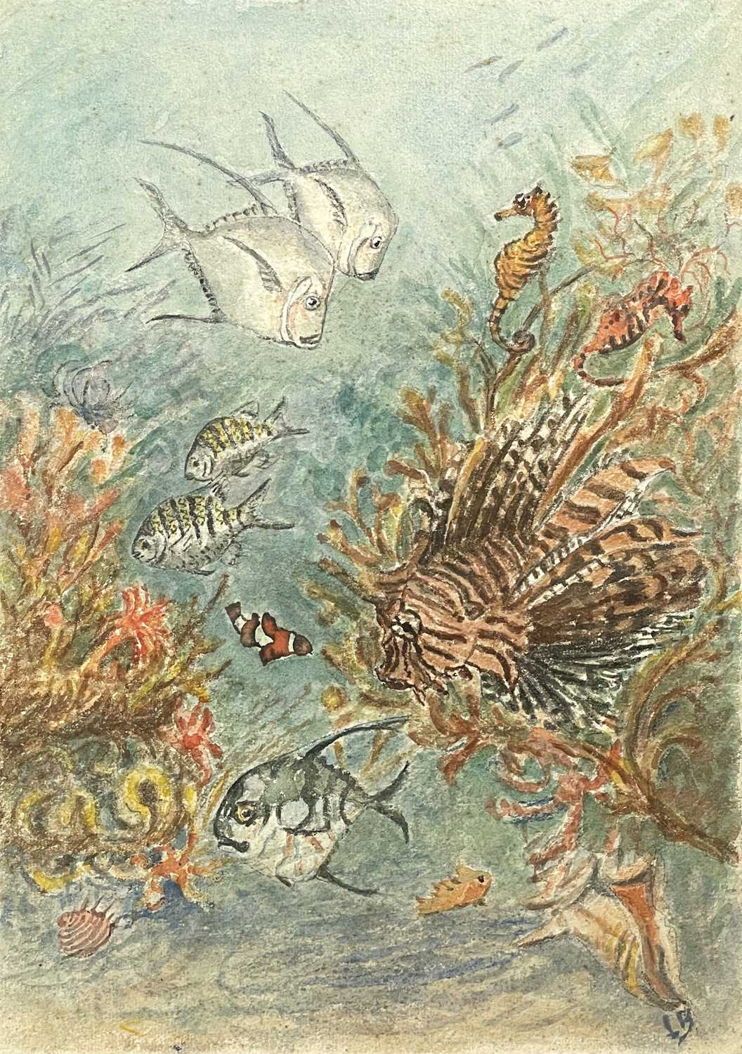 Lilian BLAND (1878-1971) (Aviator)Tropical Fish Oil on board Signed Inscribed to verso 26 x - Image 5 of 7