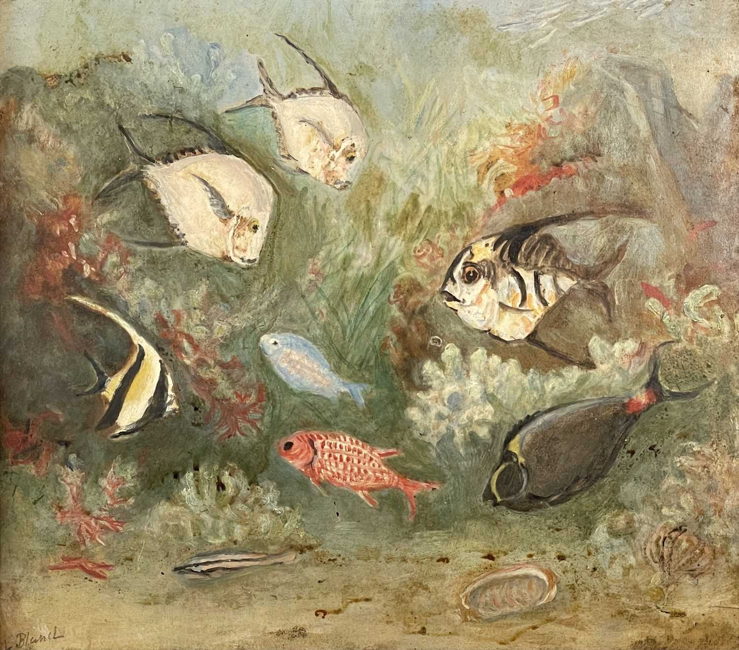 Lilian BLAND (1878-1971) (Aviator)Tropical Fish Oil on board Signed Inscribed to verso 26 x - Image 2 of 7