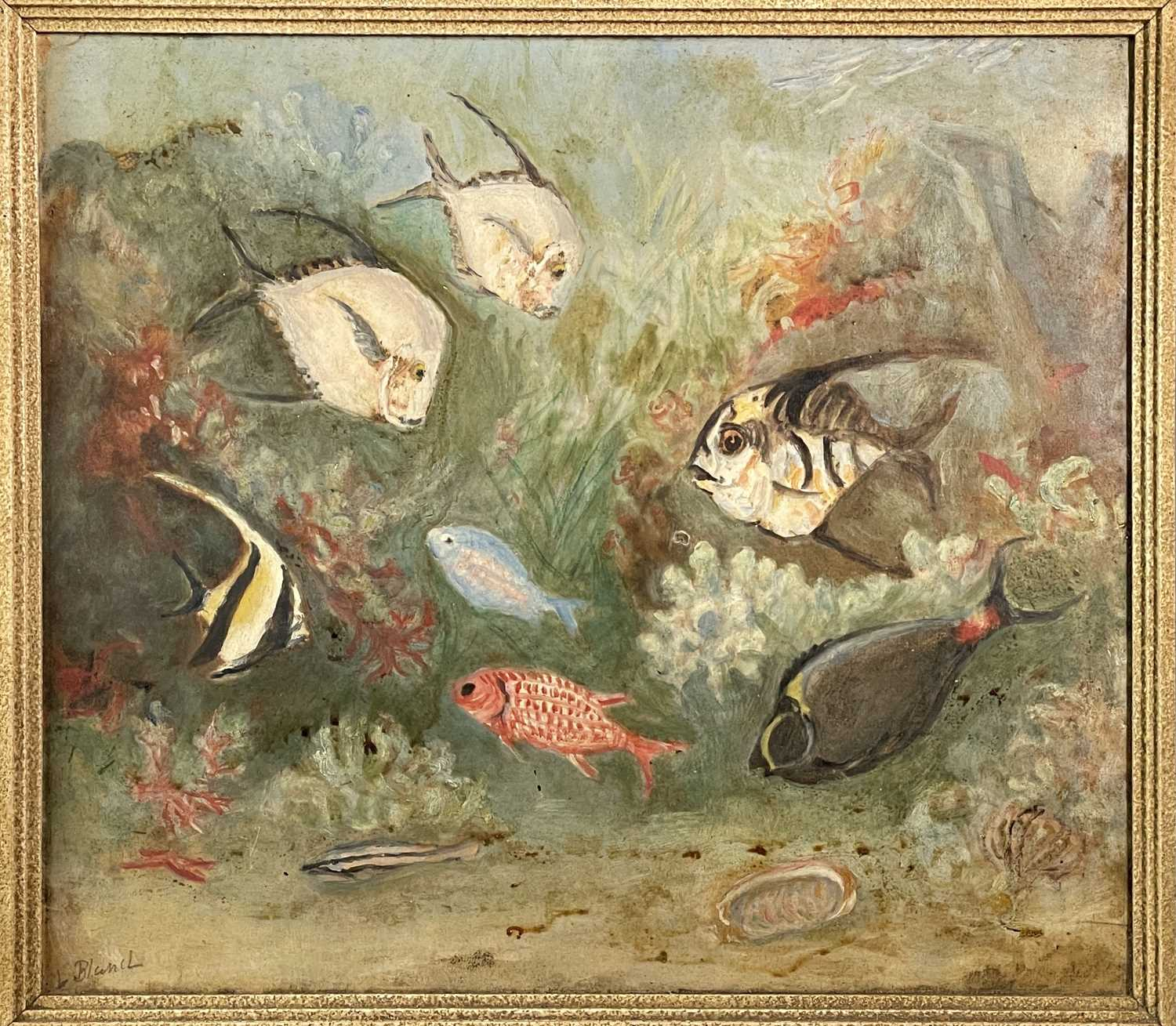Lilian BLAND (1878-1971) (Aviator)Tropical Fish Oil on board Signed Inscribed to verso 26 x - Image 6 of 7
