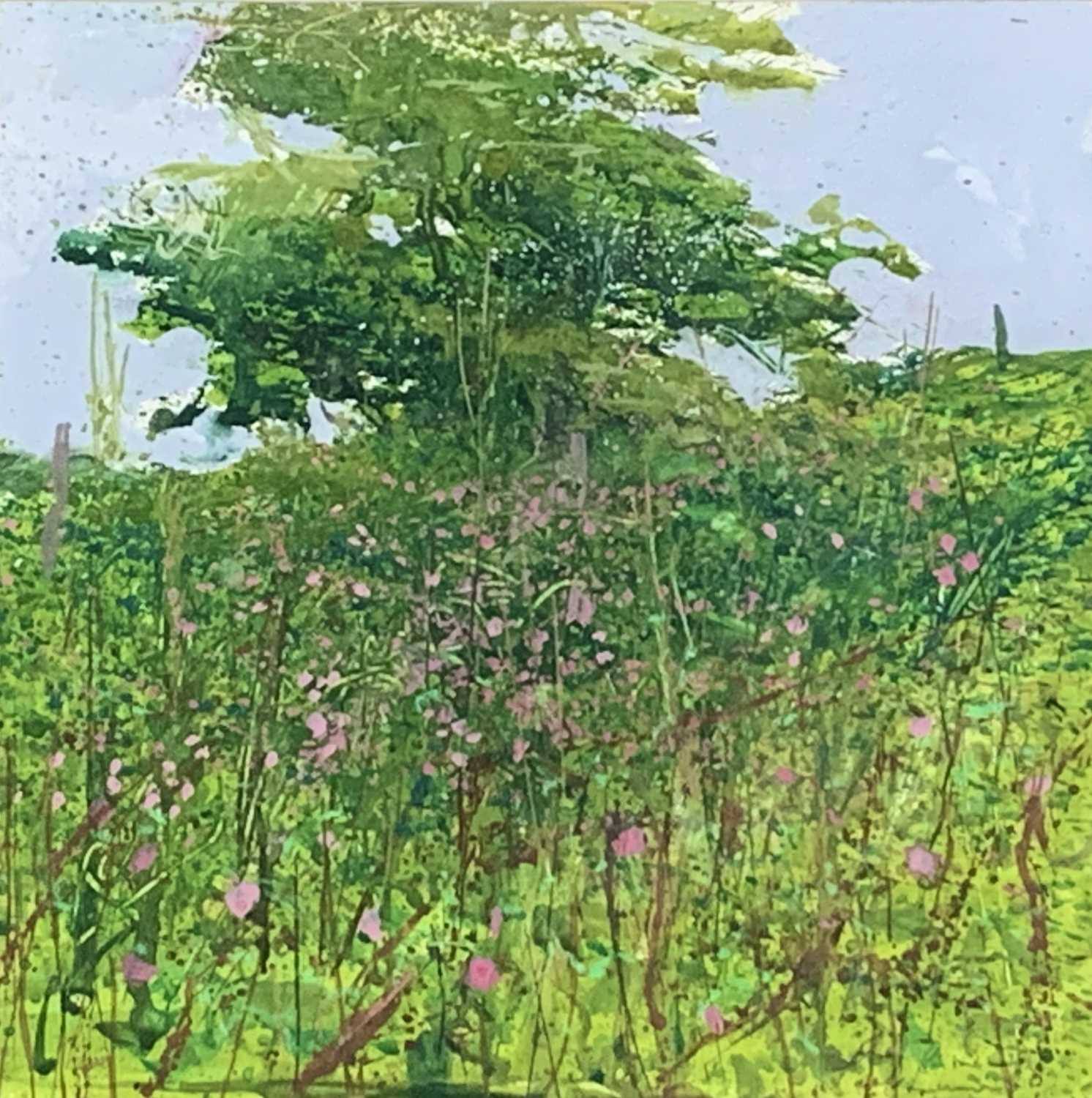 Paul LEWIN (1967)Summer Hawthorn, Higher TryeMixed mediaSigned and dated '98Inscribed to verso 22