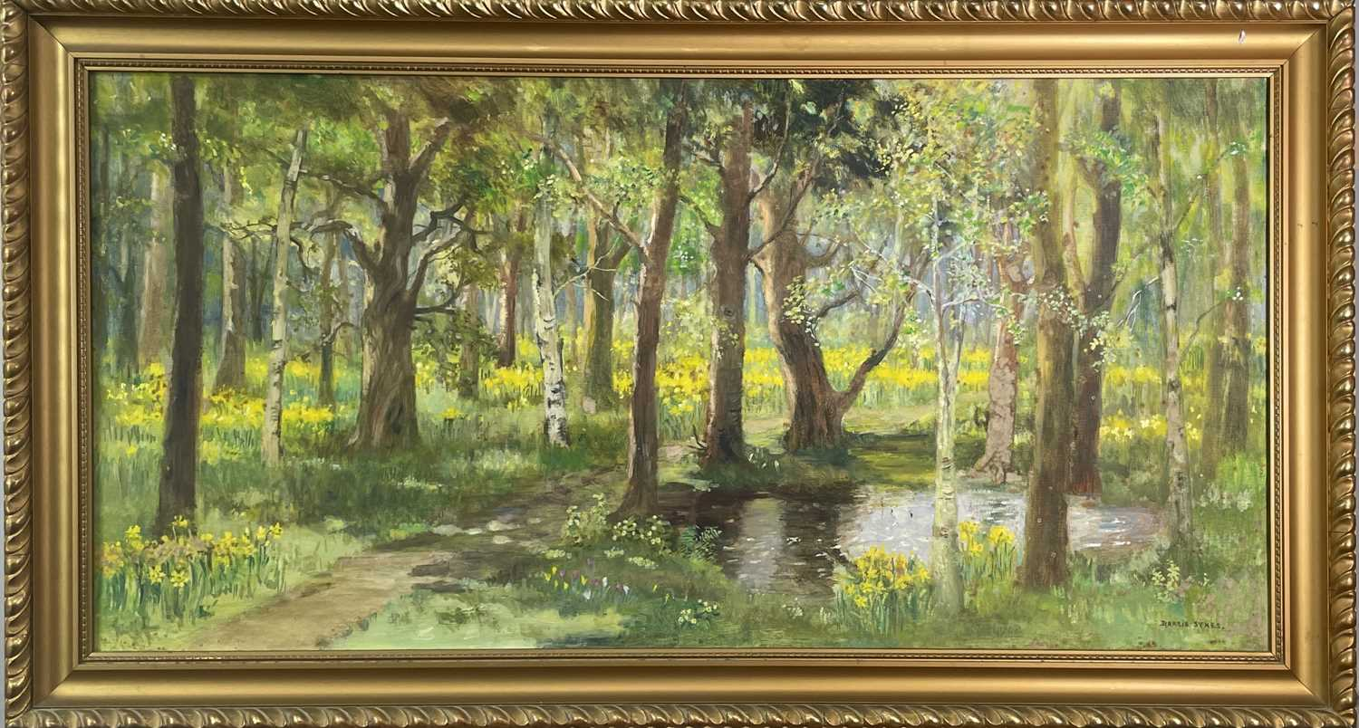 Dorcie SYKES (1908-1998)Woodland Scene Oil on board Signed 40 x 80cmCondition report: This has no