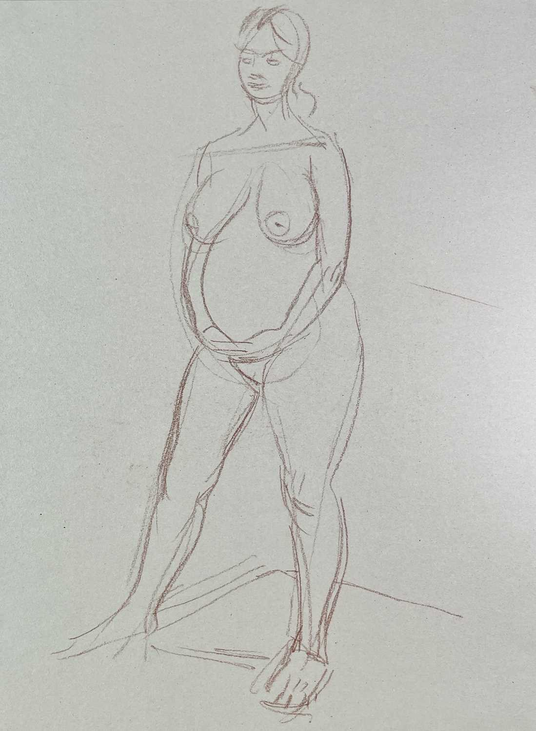 Alec WILES (1924) Nude drawings A collection of twenty Mostly signed Mostly 60x42 - Image 2 of 20