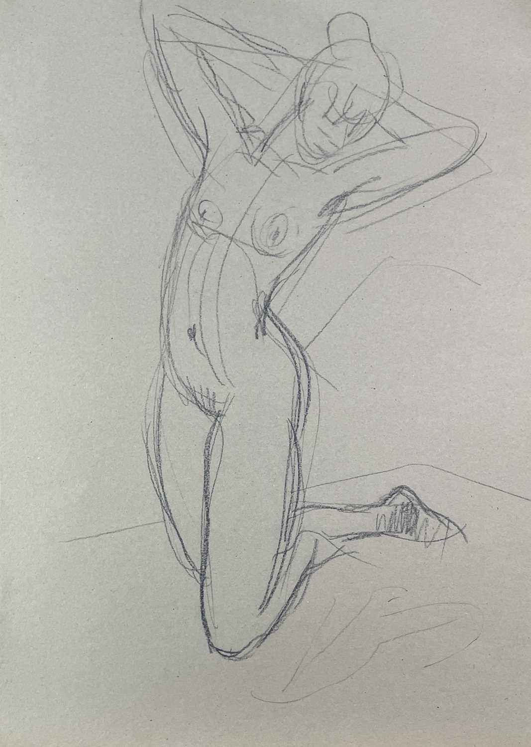 Alec WILES (1924) Nude drawings A collection of twenty Mostly signed Mostly 60x42 - Image 18 of 20