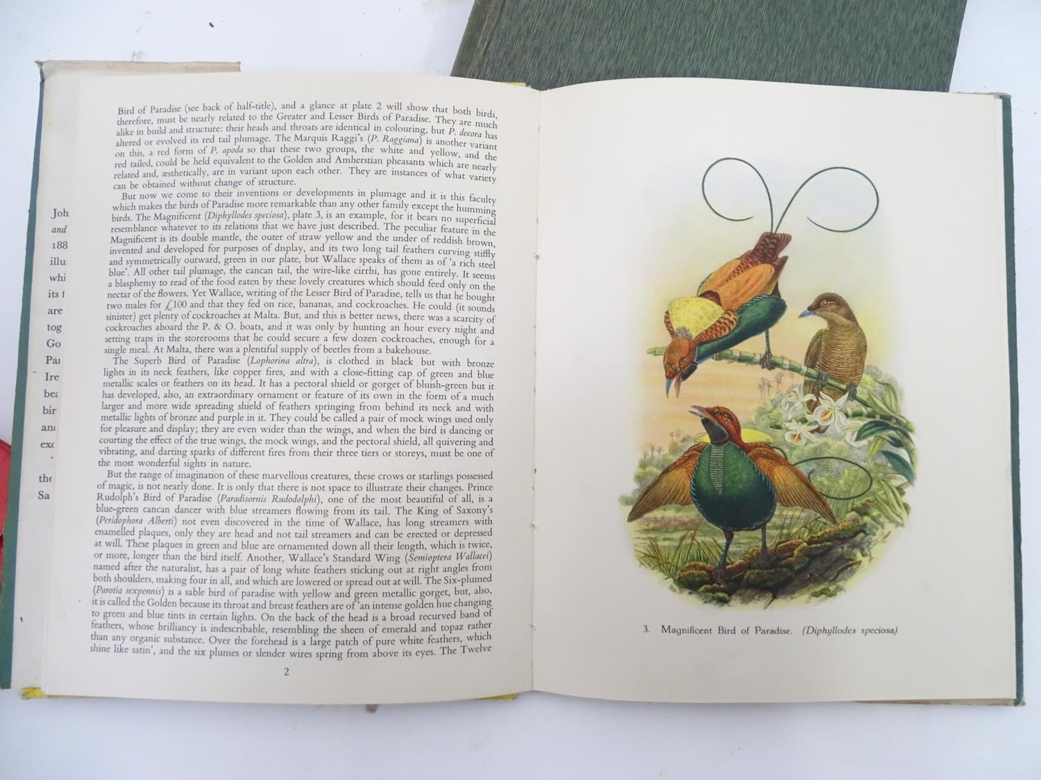 A quantity of assorted books to include The Anatomy of the Human Skeleton by J. E. Frazer, - Image 7 of 11