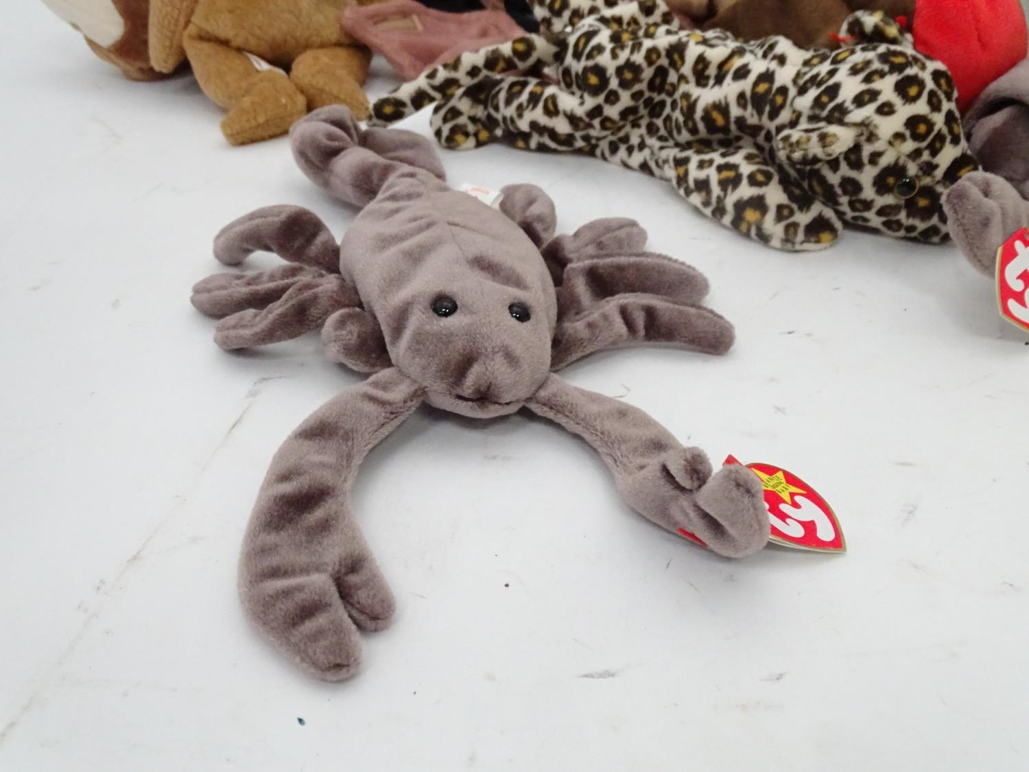 A quantity of TY Beanie Babies Please Note - we do not make reference to the condition of lots - Image 6 of 9