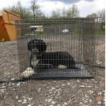 """A Croft single door dog crate / cage with tray measuring 31 1/2 x 22 1/2 x 24 3/4"""" approx. (80 x"""