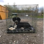 """A Rosewood single door dog crate / cage measuring 31 1/2 x 25 1/2 x 28"""" approx. (80 x 65 x 71 cm"""