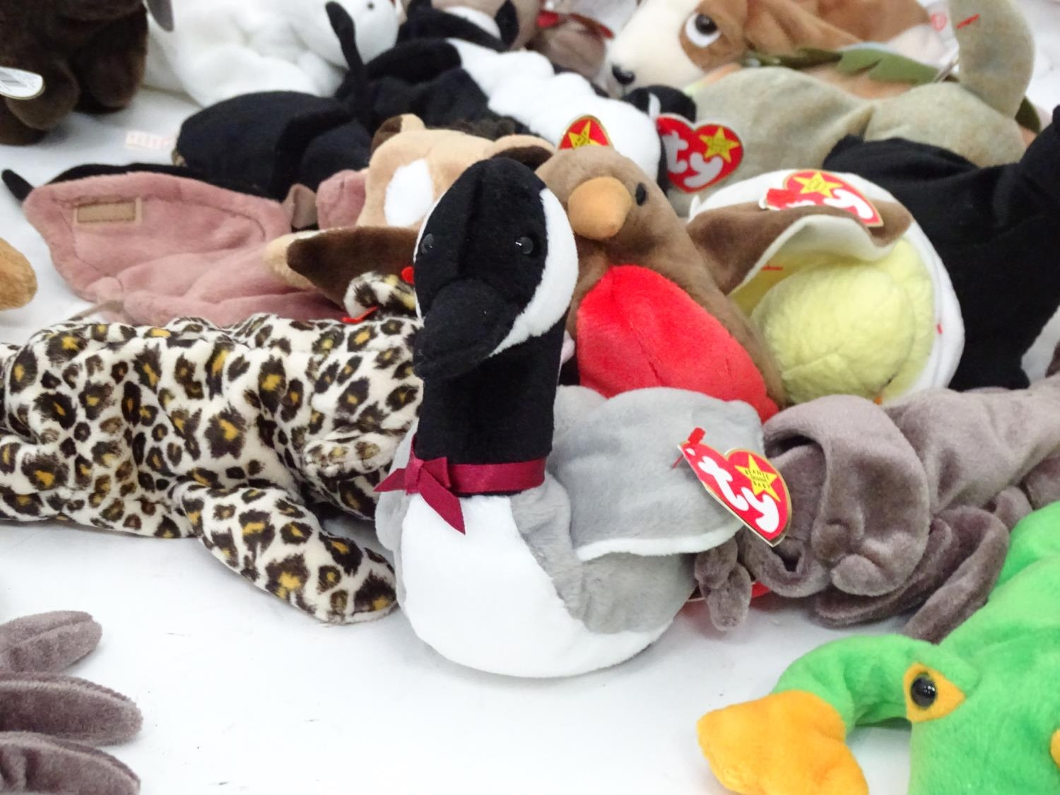 A quantity of TY Beanie Babies Please Note - we do not make reference to the condition of lots - Image 8 of 9