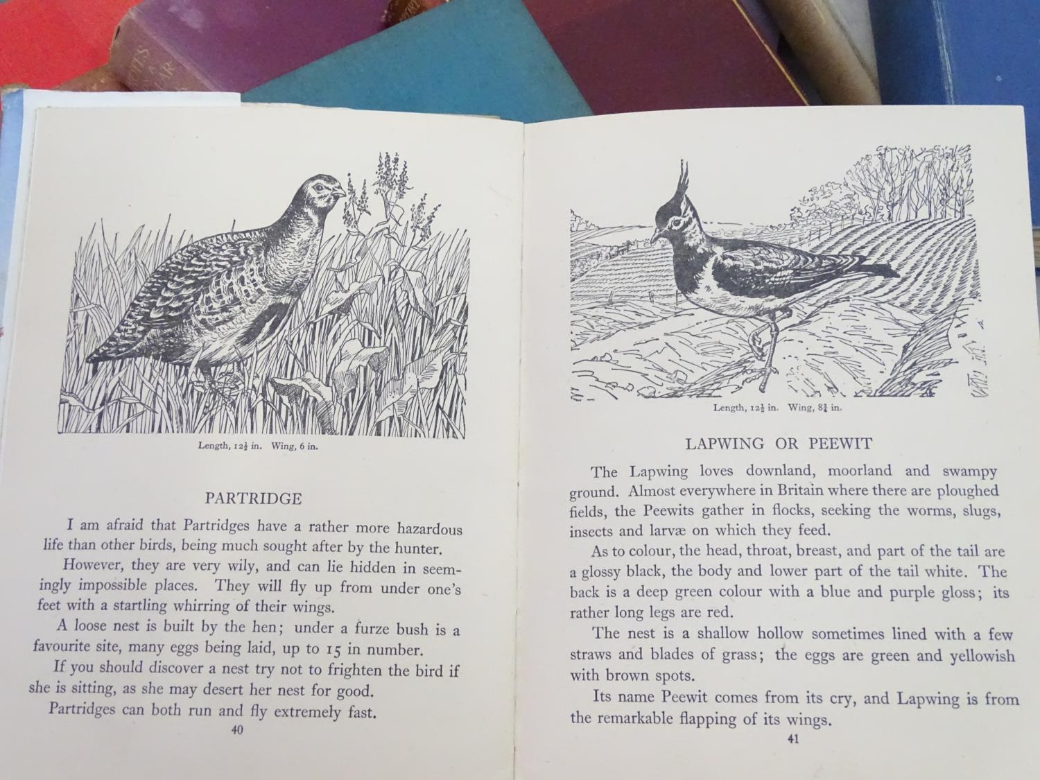 A box of assorted book to include Birds of the Field and Woodland by Blackie, Tropical Fishes by - Image 4 of 7