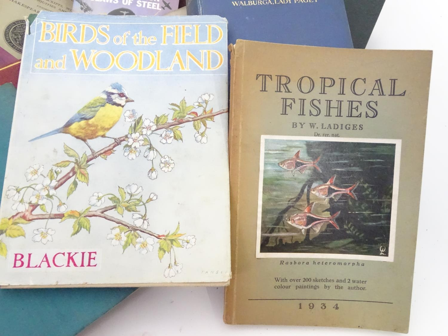 A box of assorted book to include Birds of the Field and Woodland by Blackie, Tropical Fishes by - Image 3 of 7