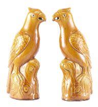 Paire de perruches à glaçure jaune, Chine XIXe