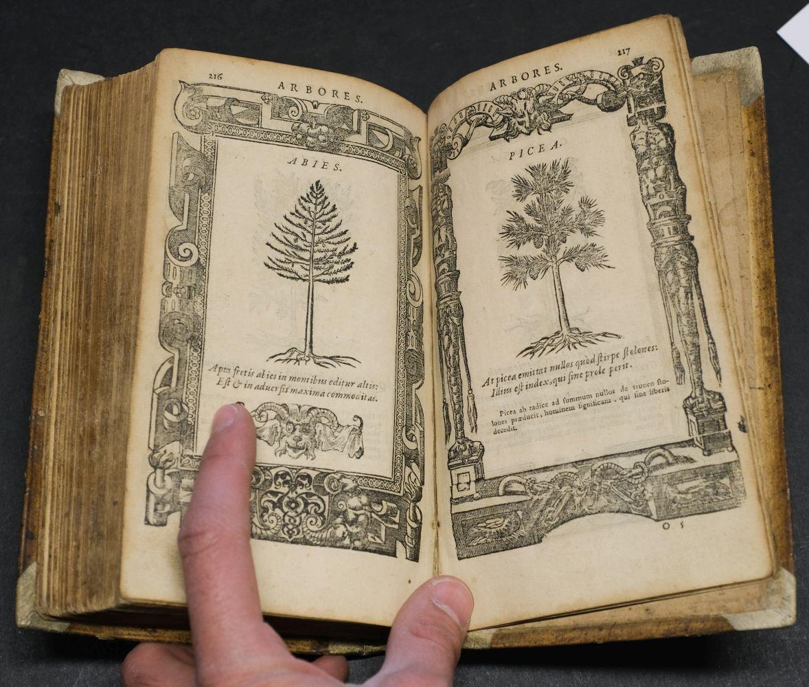 Sambucus (Joannes). Emblemata, Antwerp: Christopher Plantin, 1564 - Image 11 of 11