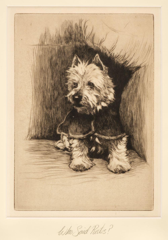 * Aldin (Cecil Charles Windsor, 1870 - 1935). Who said rats?