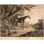 * Prints & engravings. A collection of 20 prints, maps & engravings, 18th - 20th century
