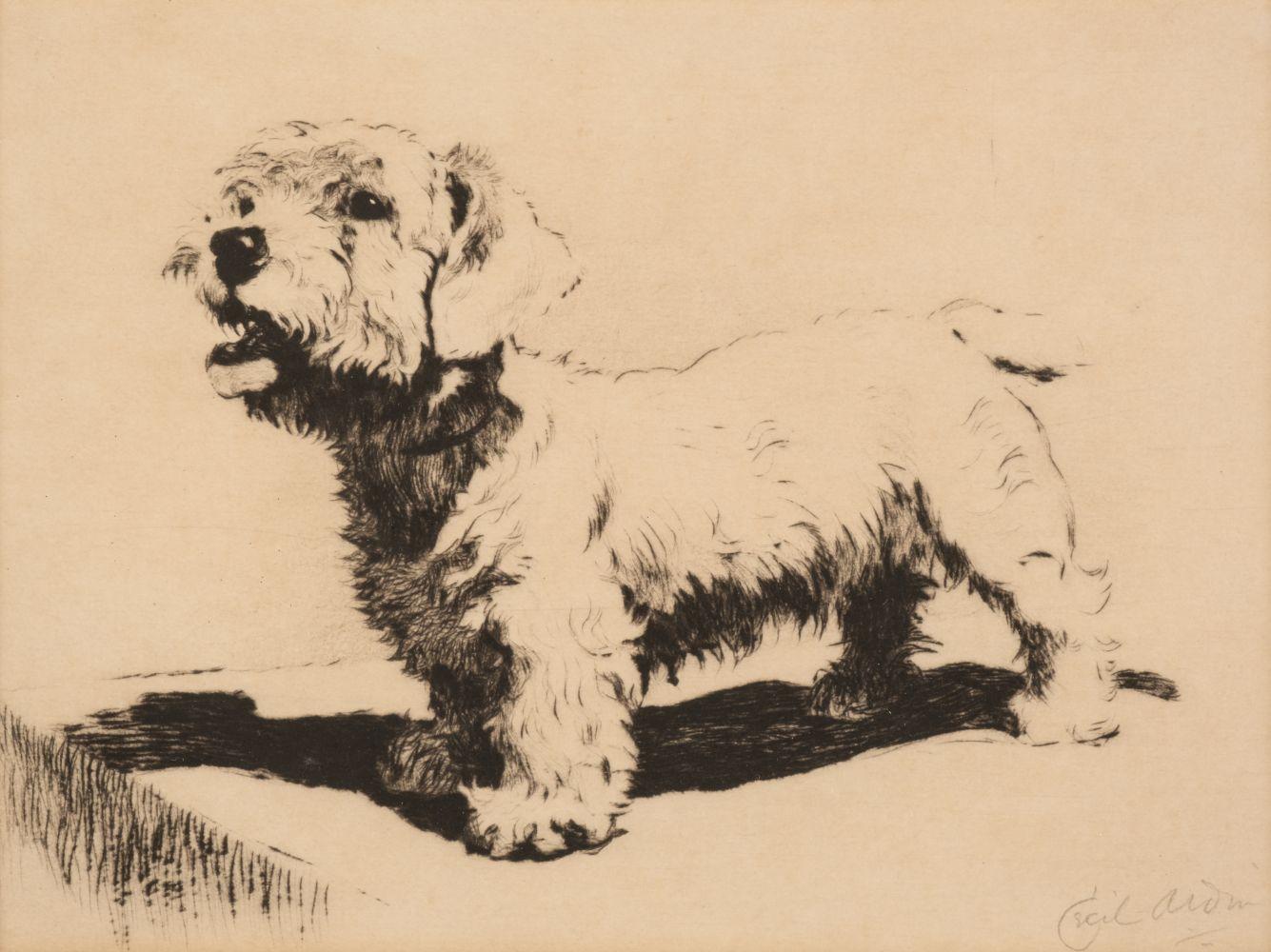 * Aldin (Cecil Charles Windsor, 1870 - 1935). Portrait of a Sealyham