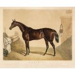* Hunt (Charles). Beeswing. The Property of the late Mr Orde Esq. circa 1850