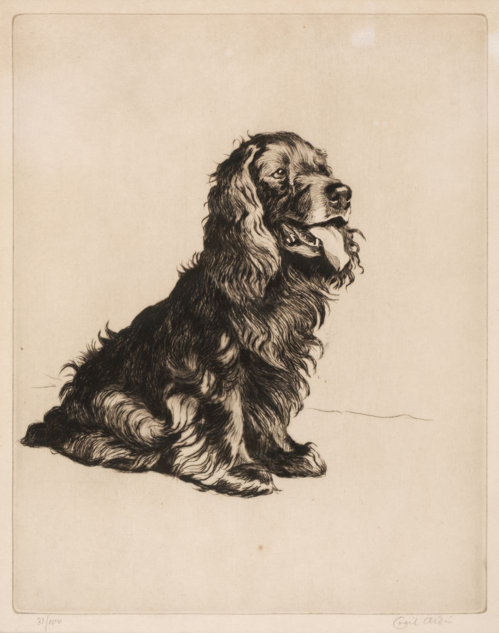 * Aldin (Cecil Charles Windsor, 1870 - 1935). A most Popular Gentleman (Spaniel)