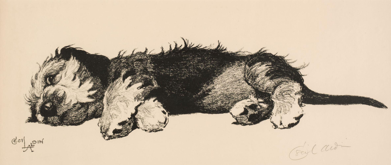 * Aldin (Cecil Charles Windsor, 1870 - 1935). Dandie Dinmont Puppy