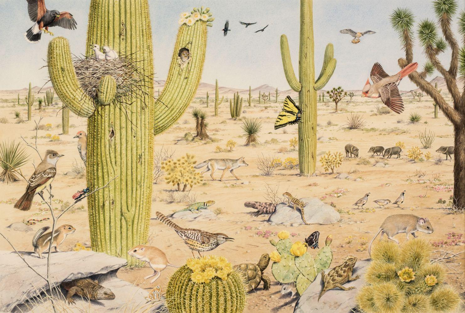 * Barrett (Peter, 1935). American Desert Landscape