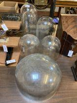 * Glass Domes, Victorian glass domes