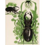 ARR * § Sutherland (Graham, 1903-1980). Beetles from A Bestiary and Some Correspondences, 1967