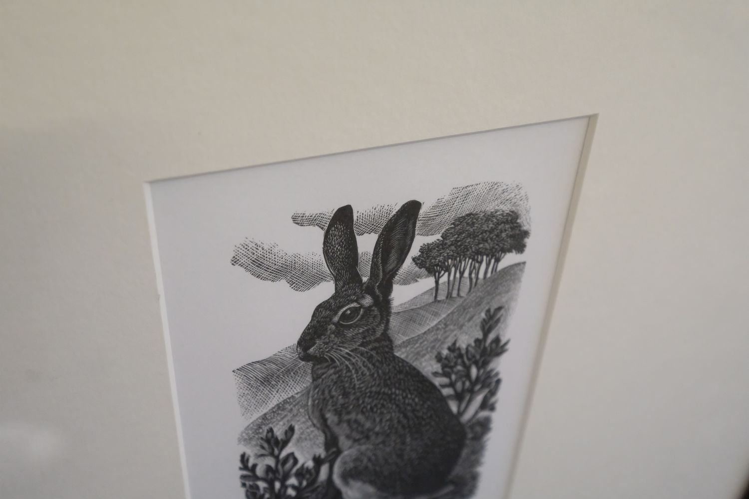 ARR * § Tunnicliffe (Charles Frederick1901-1978). Sitting Hare, 1949 - Image 3 of 5