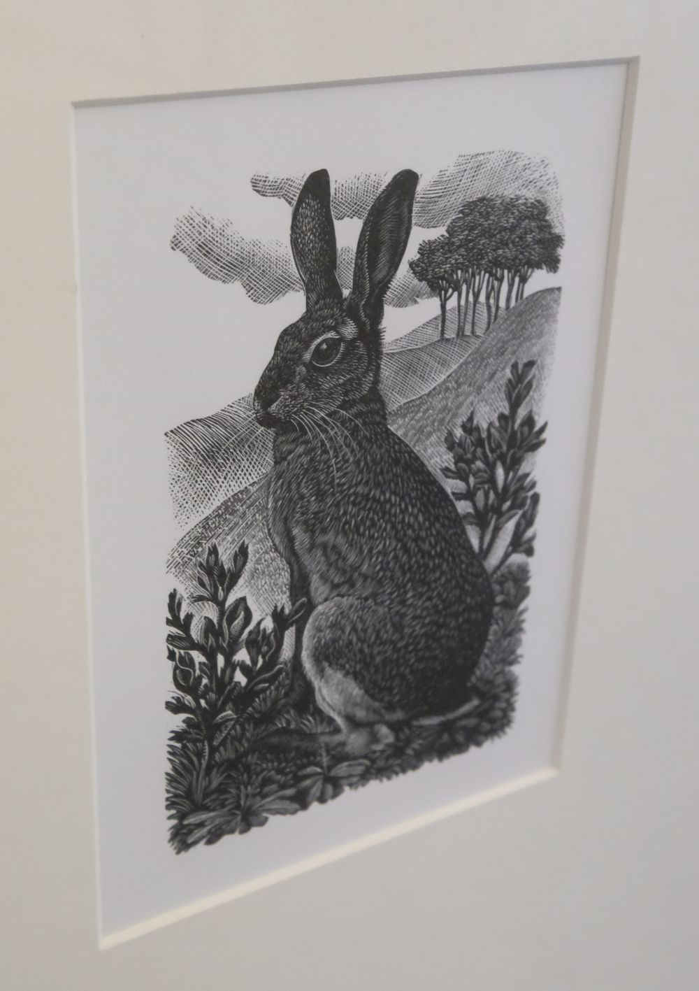 ARR * § Tunnicliffe (Charles Frederick1901-1978). Sitting Hare, 1949 - Image 5 of 5