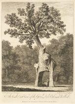 Evelyn (John). Silva, 1776: