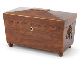 Victorian rosewood sarcophagus shaped tea caddy with lion mask handles, lidded compartments and