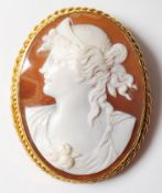 LARGE ANTIQUE 9CT GOLD AND CONCH SHELL CAMEO BROOCH