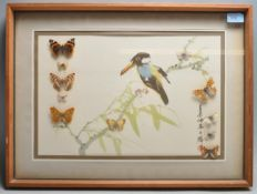 TAXIDERMY AND NATURAL HISTORY INTEREST JAPANESE PRINT WITH NATURAL BUTTERFLY