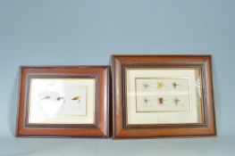 TWO VINTAGE 20TH CENTURY FISHING INTEREST FRAMED HOOKS