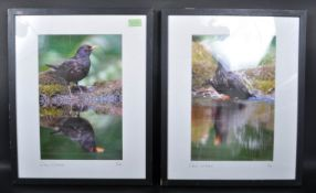 LIMITED EDITION COLOUR PRINTS OF BIRD SCENES