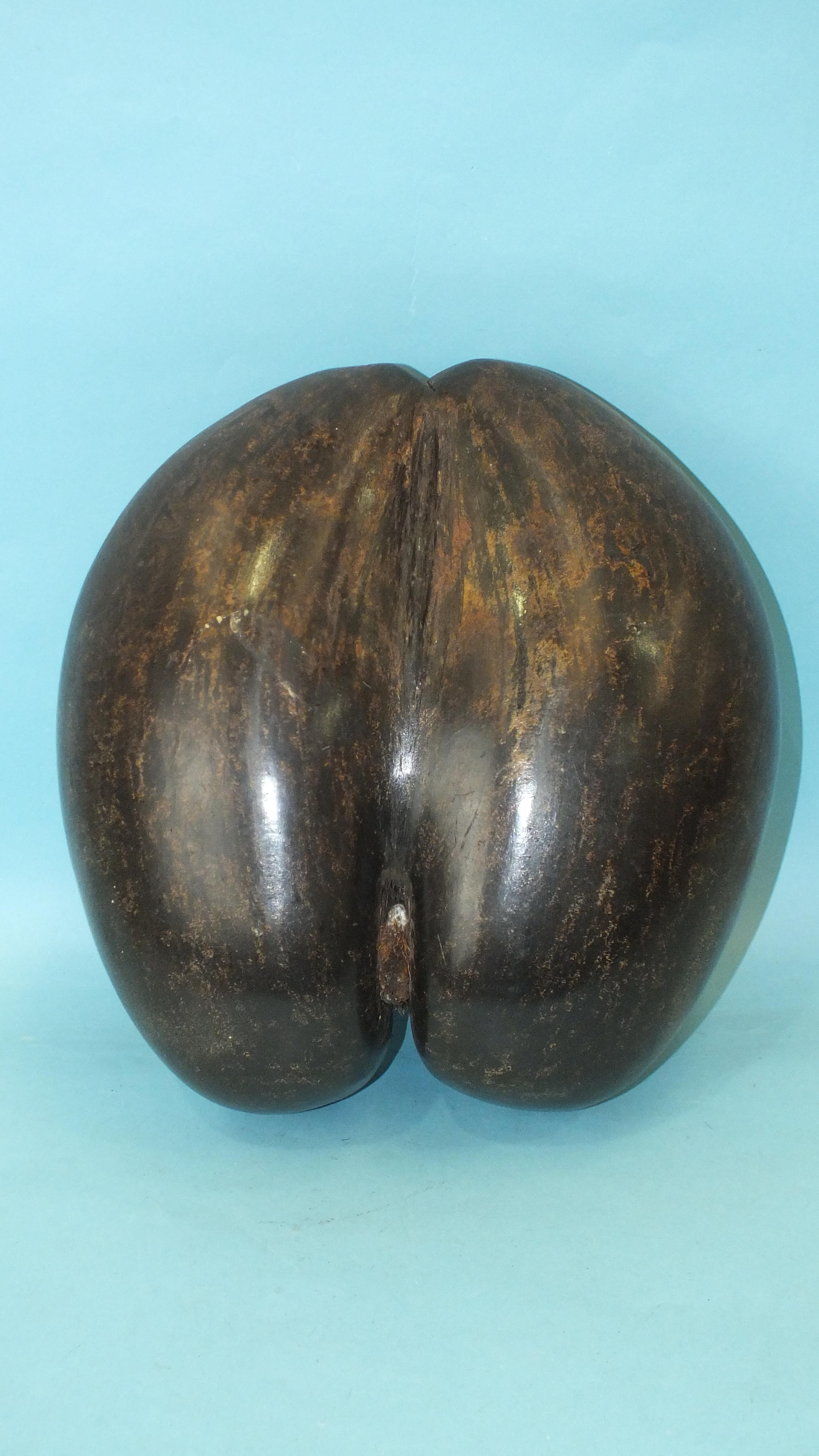 A coco-de-mer seed (Lodoicea Maldivica) carved as a basket, with shaped rim and integral handle, - Image 2 of 2