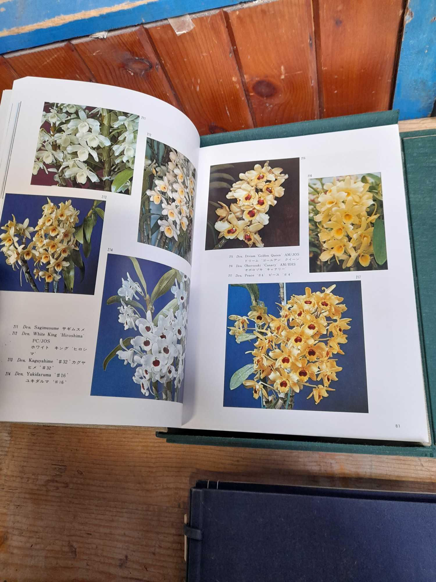 2 ORIENTAL BOOKS - Image 6 of 14