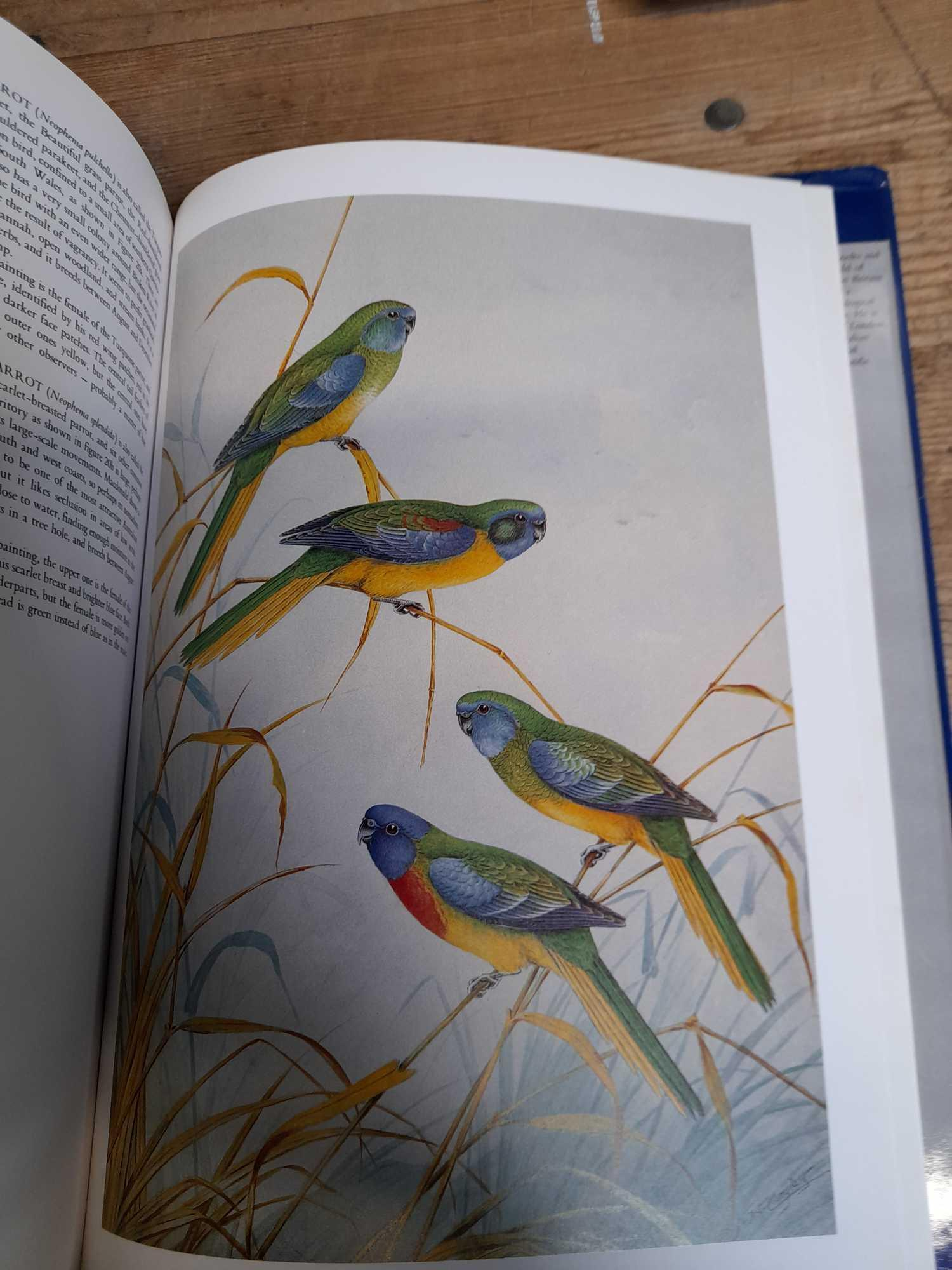 3 PARROT BOOKS - Image 5 of 20