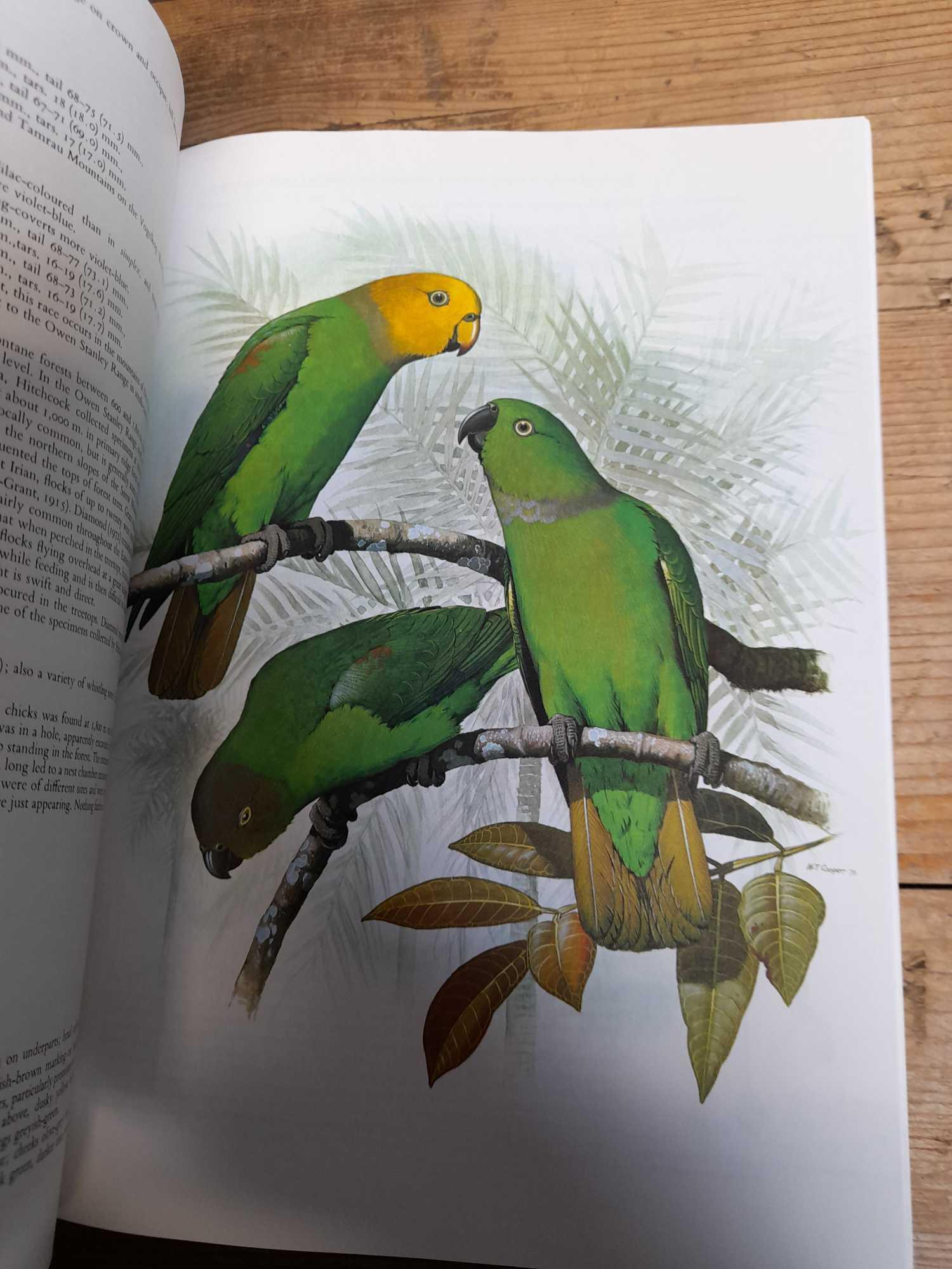 3 PARROT BOOKS - Image 12 of 20