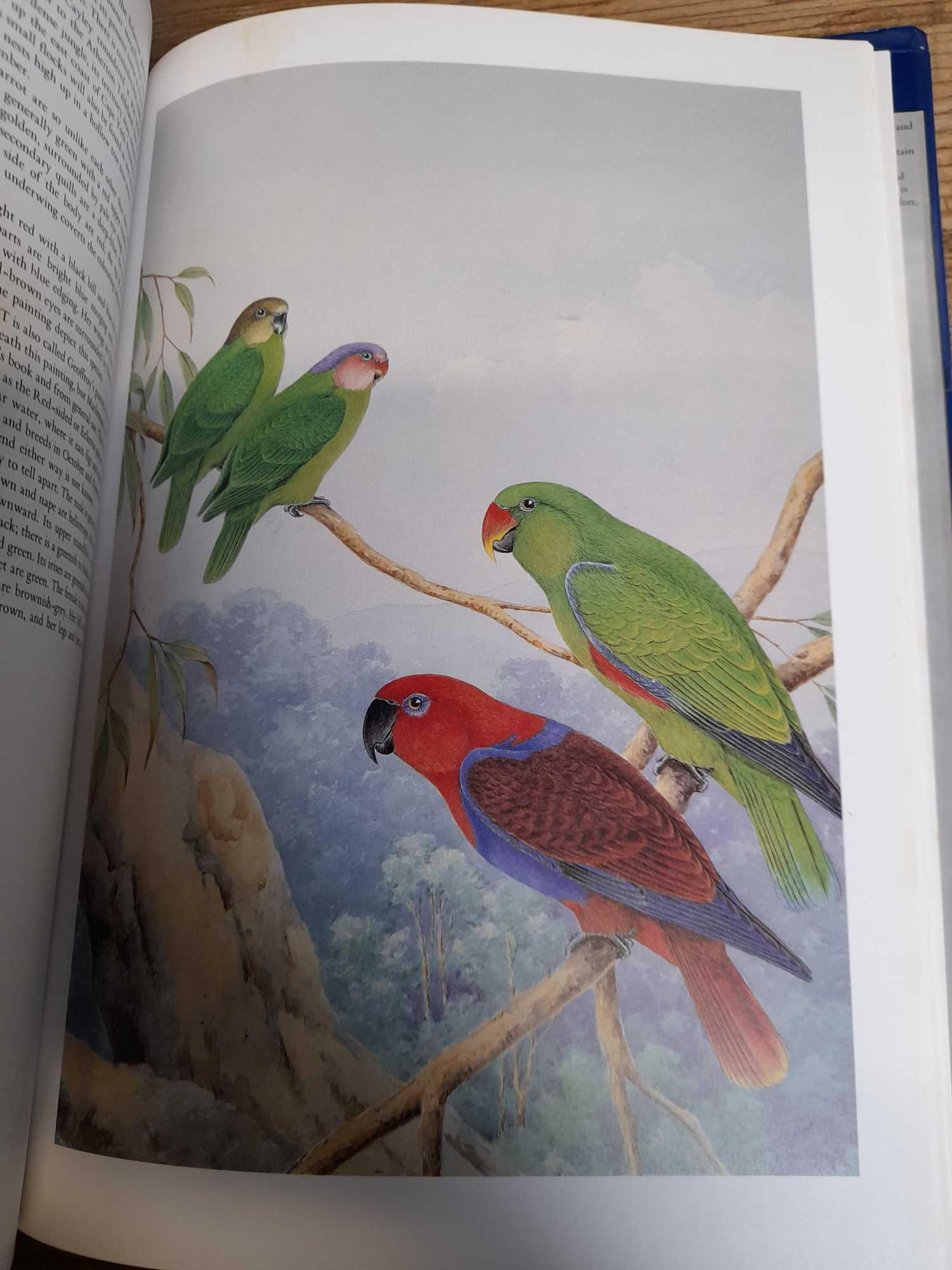 3 PARROT BOOKS - Image 6 of 20