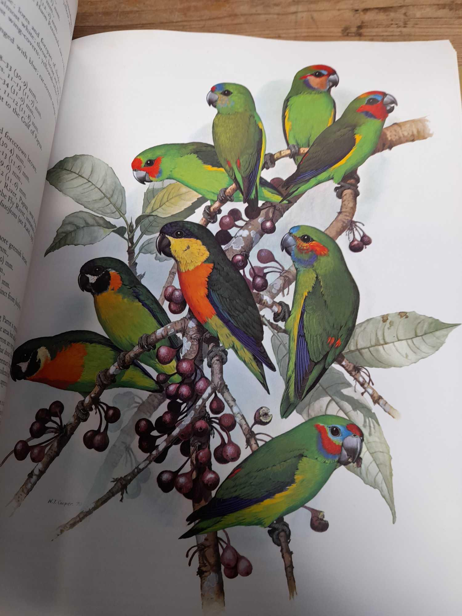 3 PARROT BOOKS - Image 20 of 20
