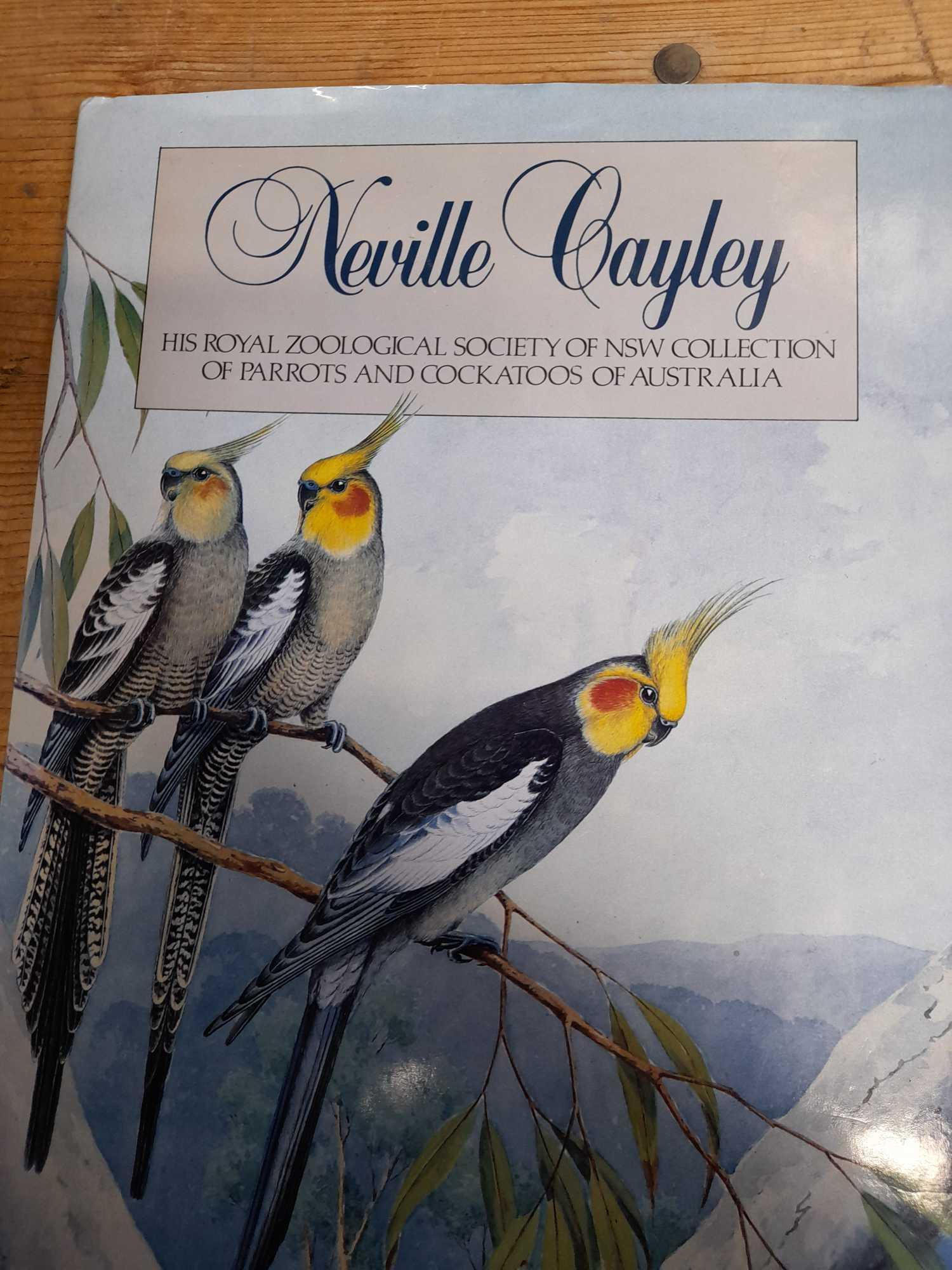 3 PARROT BOOKS - Image 2 of 20