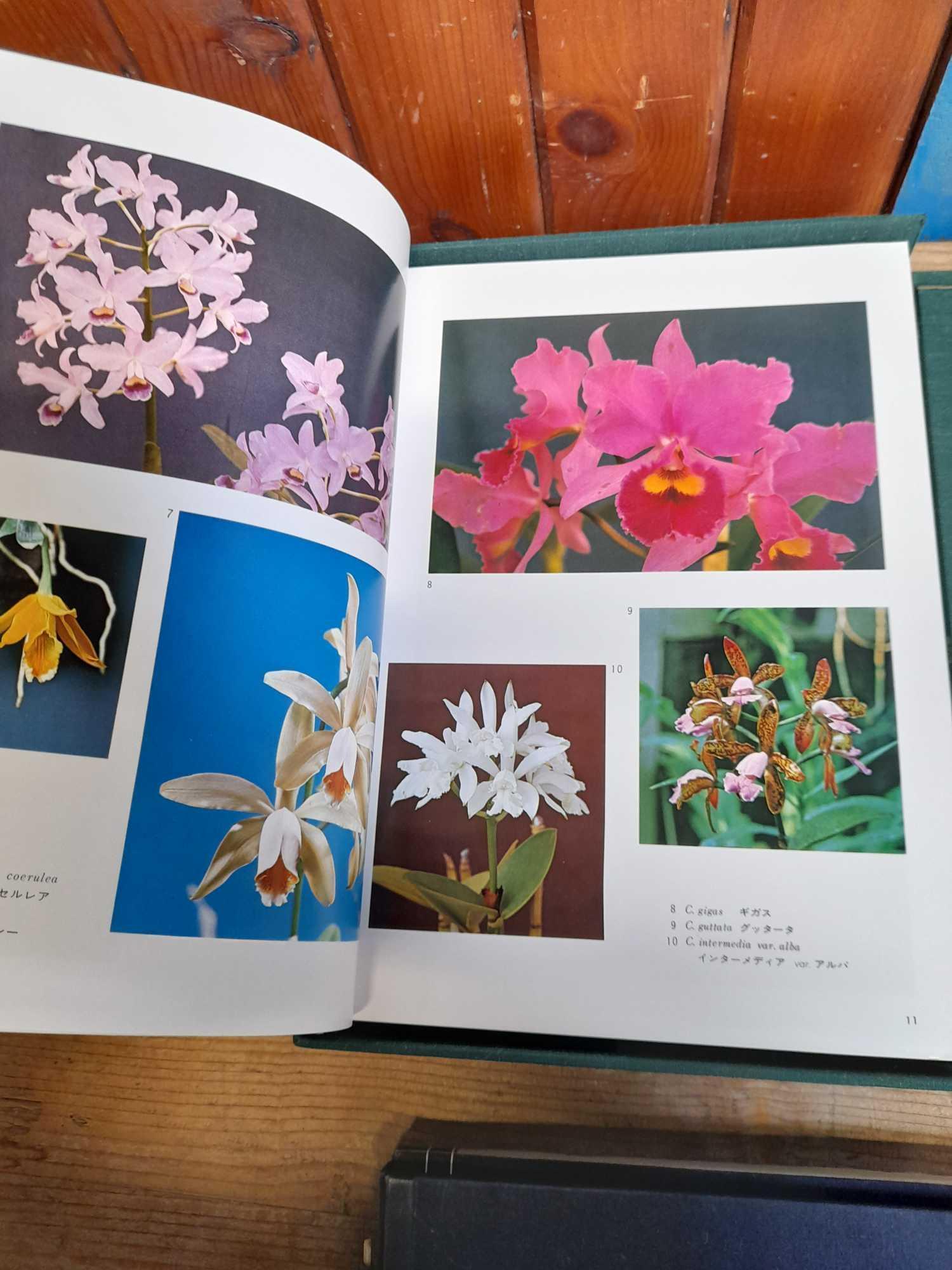 2 ORIENTAL BOOKS - Image 5 of 14