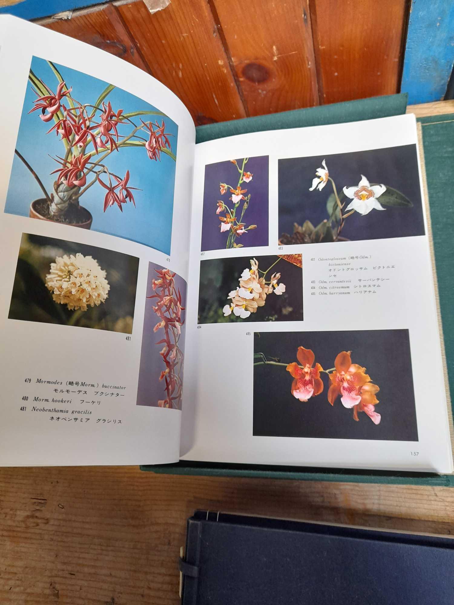 2 ORIENTAL BOOKS - Image 7 of 14