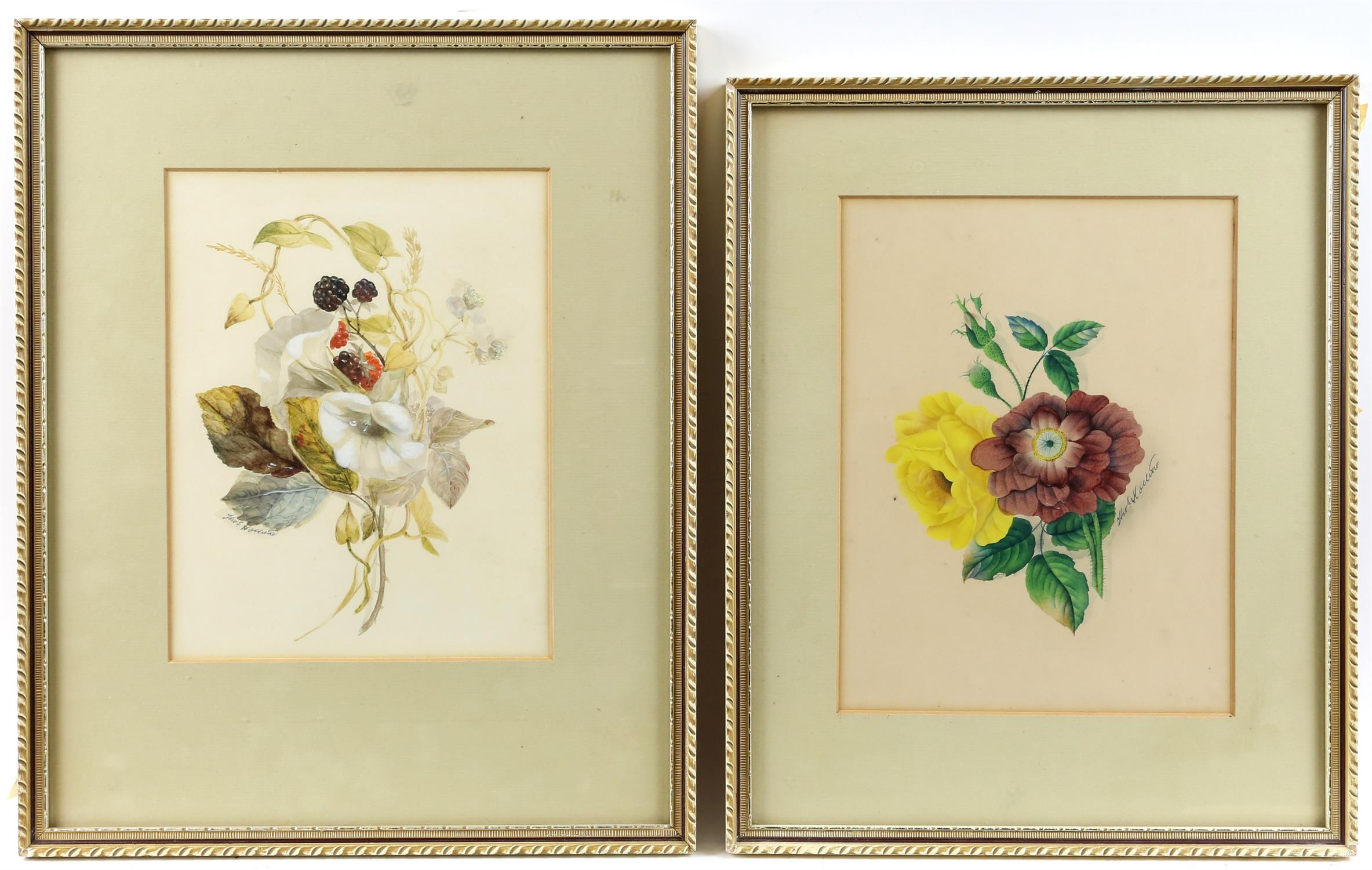 Thomas Holland (British, 1795-1865), set of four flower studies, signed, watercolours,