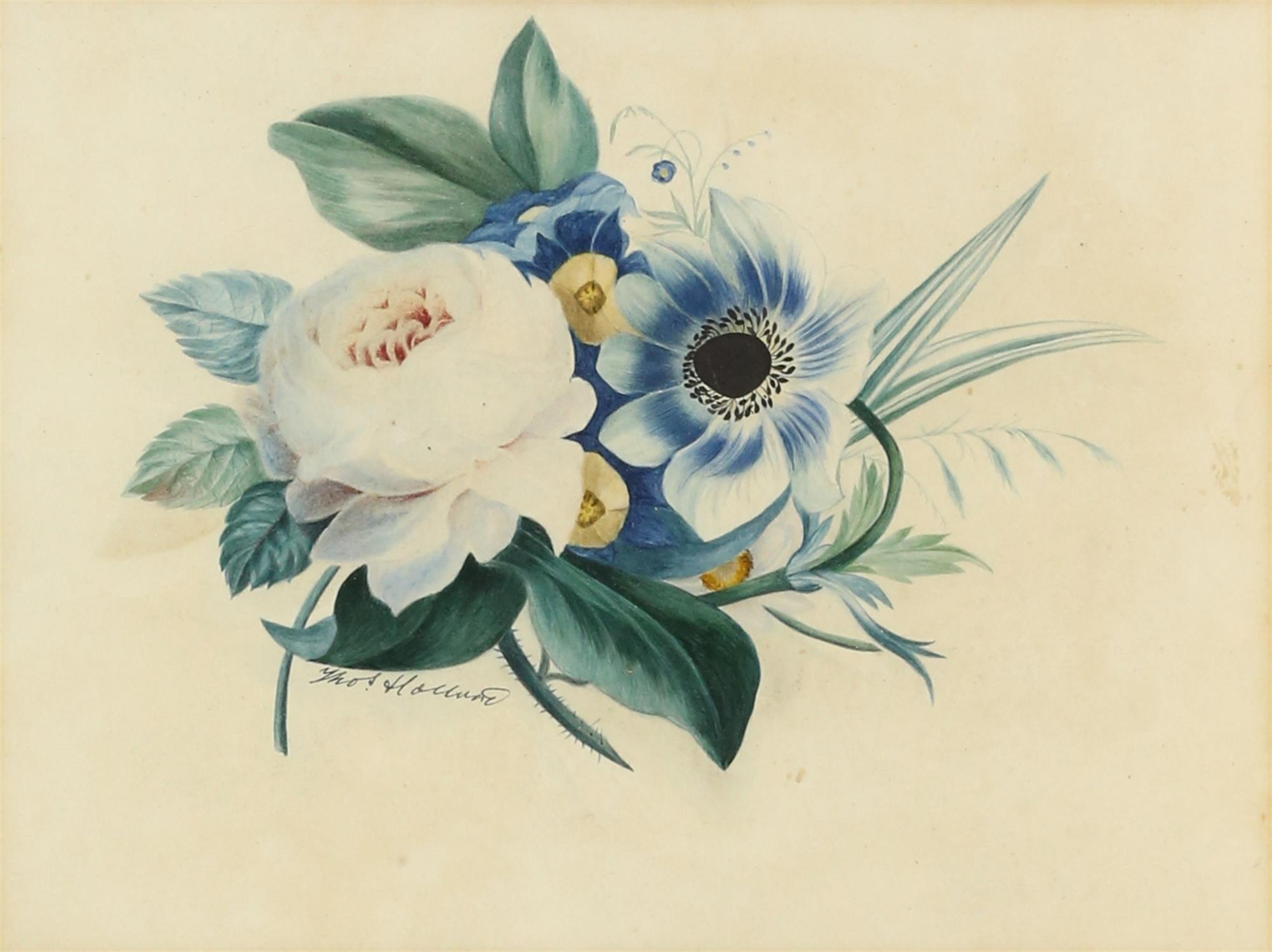 Thomas Holland (British, 1795-1865), set of four flower studies, signed, watercolours, - Image 4 of 7